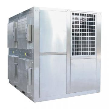 Fzg Series Tray Vacuum Drying/Dry/ Drier Equipment for Fruit Slices and Vegetable