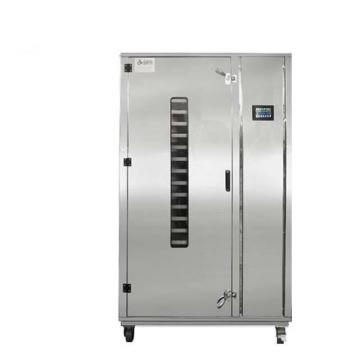 Lyophilization Vegetable Meat Leaf Grain Rice Cocoa Fruit Food Freeze Drying Freeze Dryer Machine Price